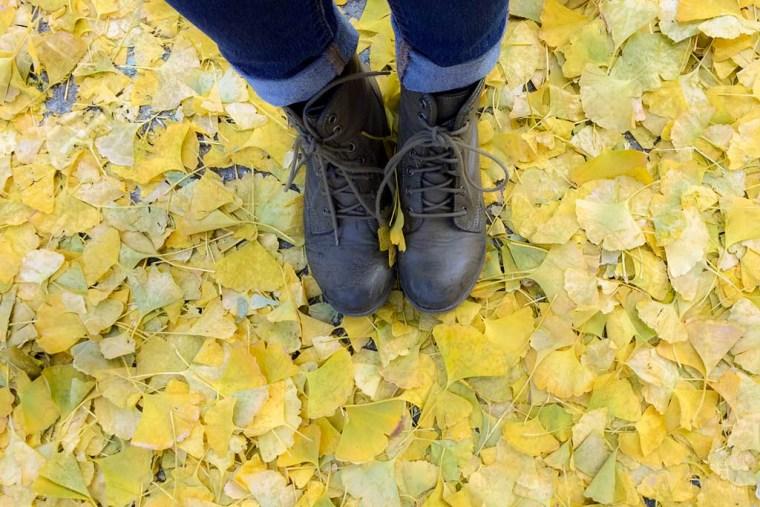 leaves-beijing-1-of-1