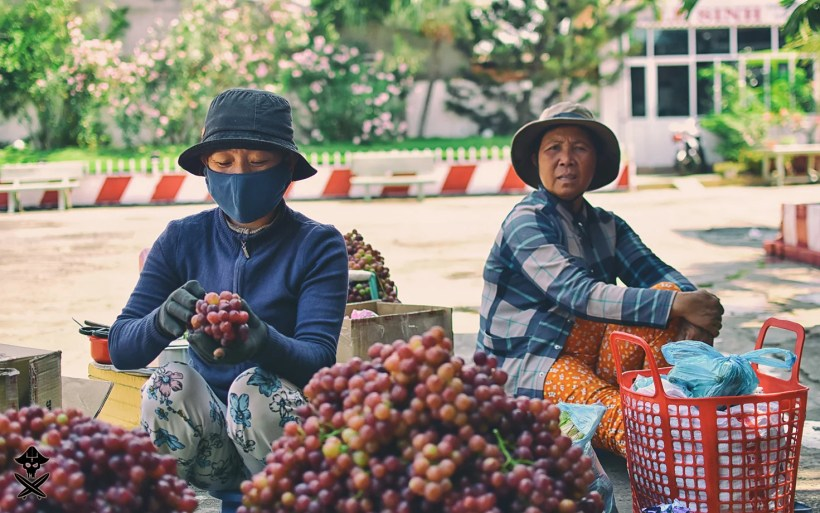 portrait of two Vietnamese women selling grapes from the basket