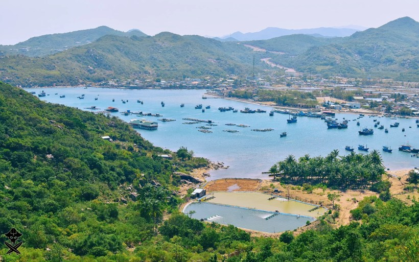 small fishermen village in vietnam packed with blue boats and forest of palms at the beach