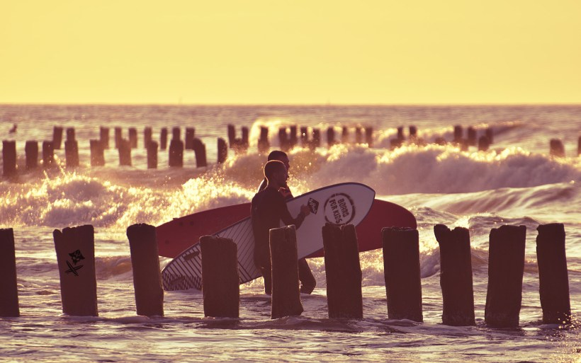 surfers walking into the water with boards at the sunset