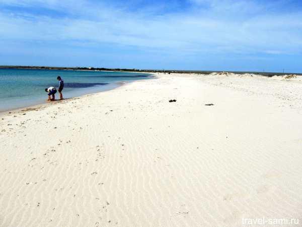 Фото Оленевка Пляж