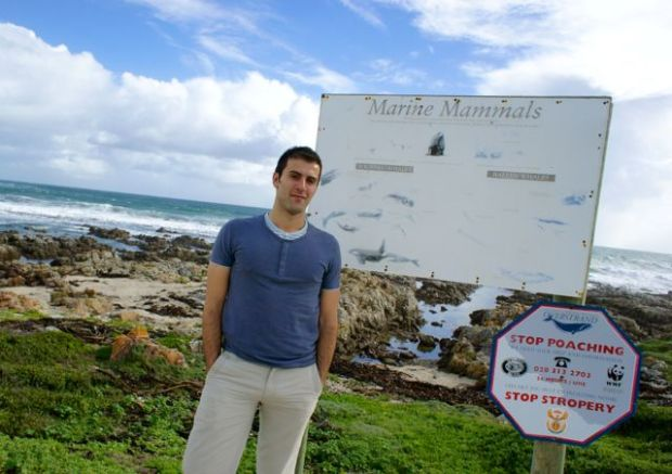 Interpretive signs on Hermanus' cliffs