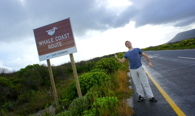The Whale Coast Route