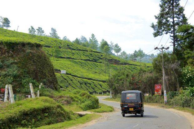 A tuk tuk racing past Munnar's tea plantations