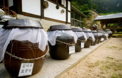 Fermenting soybean paste
