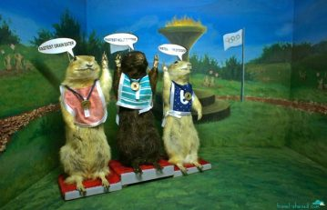 Torrington Gopher Museum in Torrington, Alberta