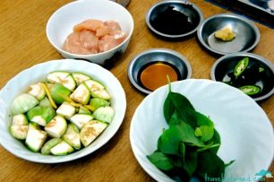 Ingredients for green curry chicken