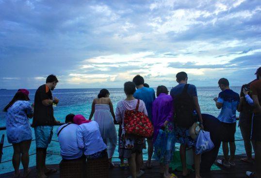 "Watching the ""feeding"" during the Adaaran Prestige Vadoo day trip"