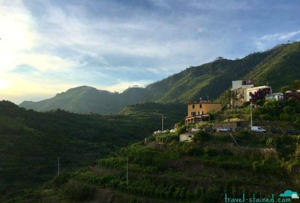 Lovely evening light over the terraced vineyards of Corniglia.