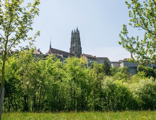 Fribourg Kathedrale