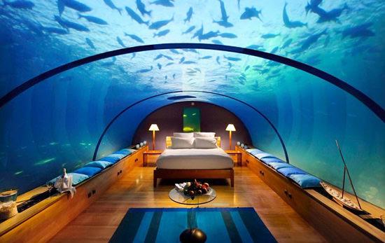 The Nautilus Suite