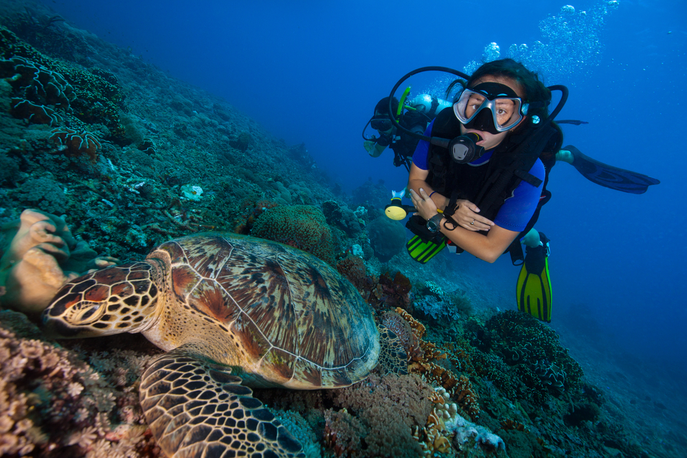 Scuba diving, water activity Bali