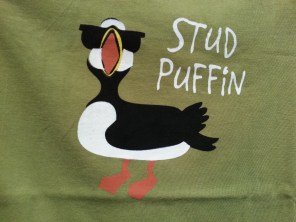 The only puffin I saw