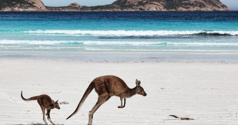 Australia Trip 2013 (Overview)