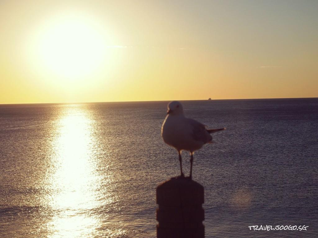 Sunset Coast Perth 1- travel.joogo.sg