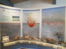 377 million years ago