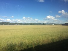 beautiful day on the train to Rättvik