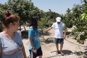 <h5>Tour of the backyard. Perivoli.</h5>