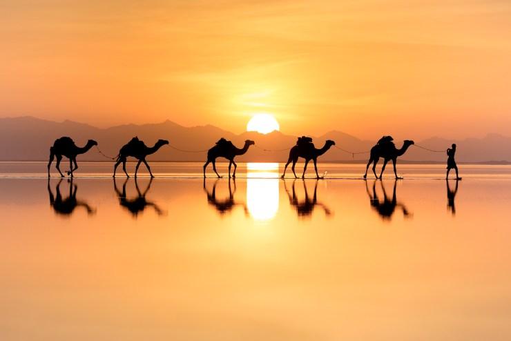 Ethiopia Natalia Stone Camels 1