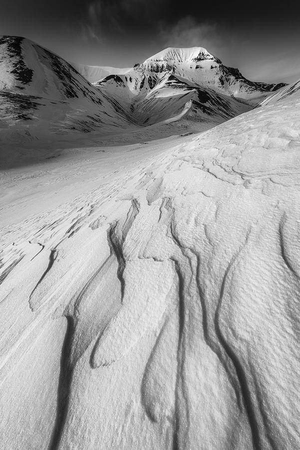 Svalbard 14