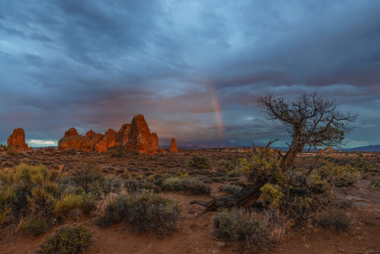 Arches-National-Park-Michael-Bonocore