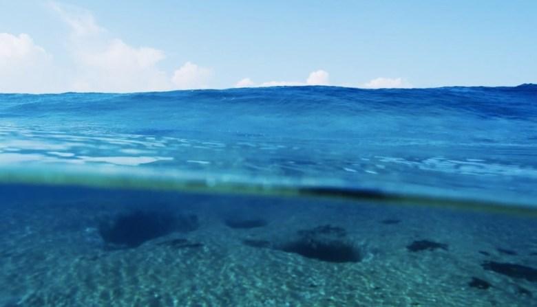 Morgan Maassen Water Hawaii 5