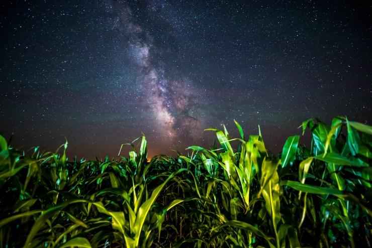 Field Of View Randy Halverson-12