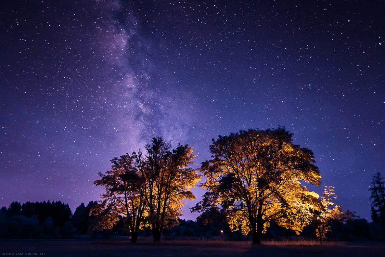 Milky Way-Champoeg- Park