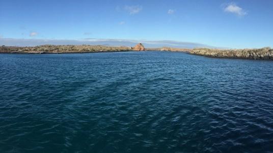 Galapagos-header
