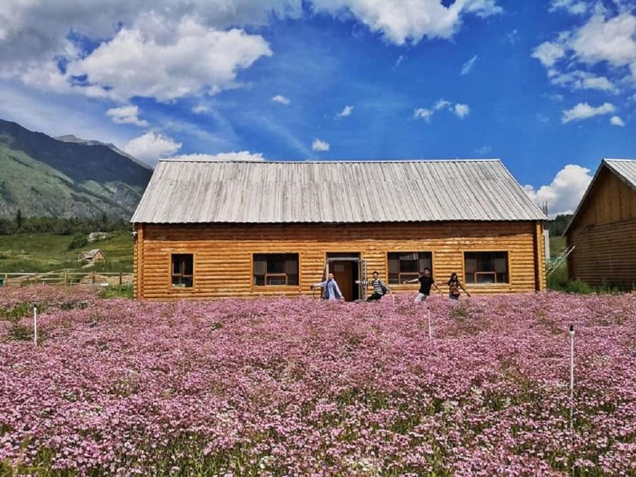最美鄉村!新疆禾木村旅遊自由行攻略