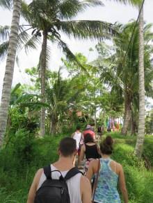 Walking through the rice paddies