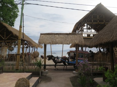 Horse and buggy passing Bambu Cottages