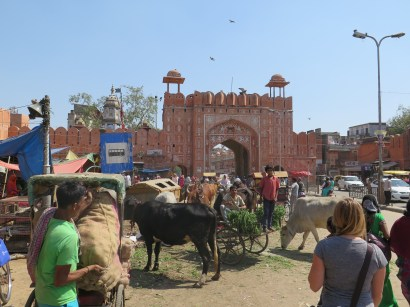 Entering the Pink City