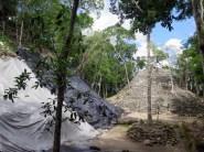 On El Tigre