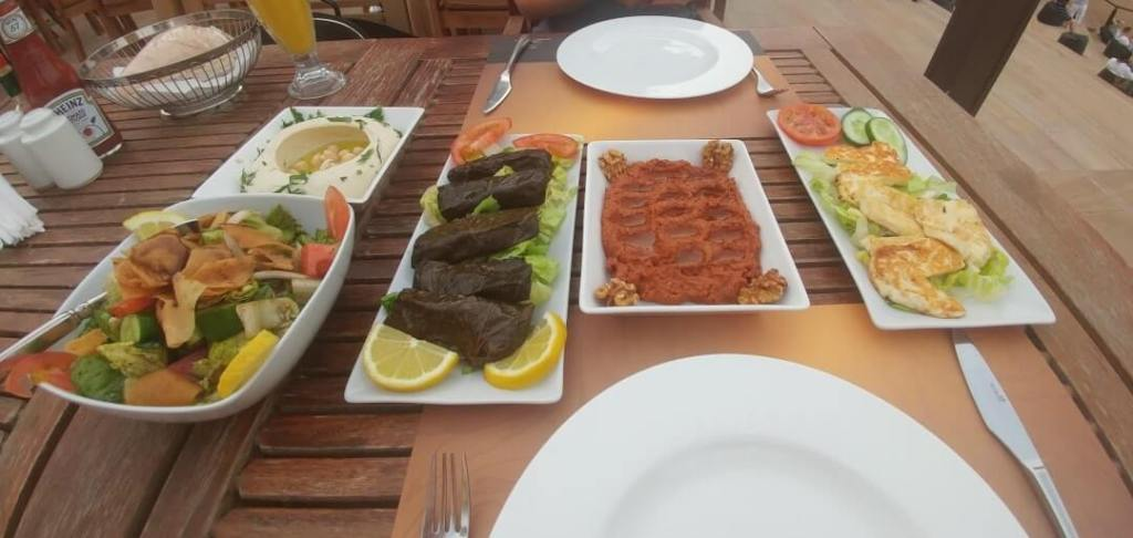 Appetizers, tabouli salad, fattoush salad, hummus