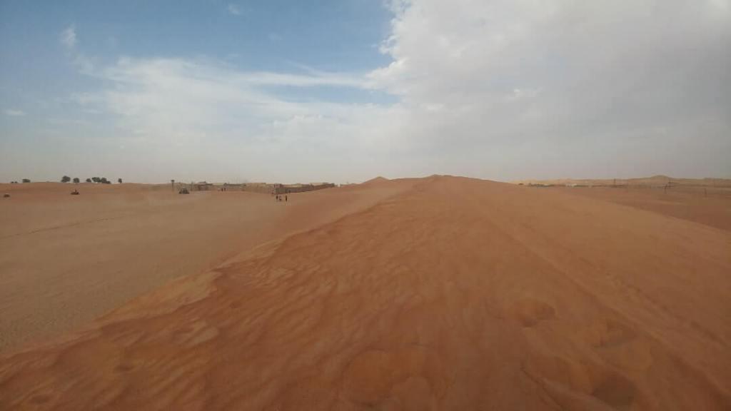 desert, safari, sand