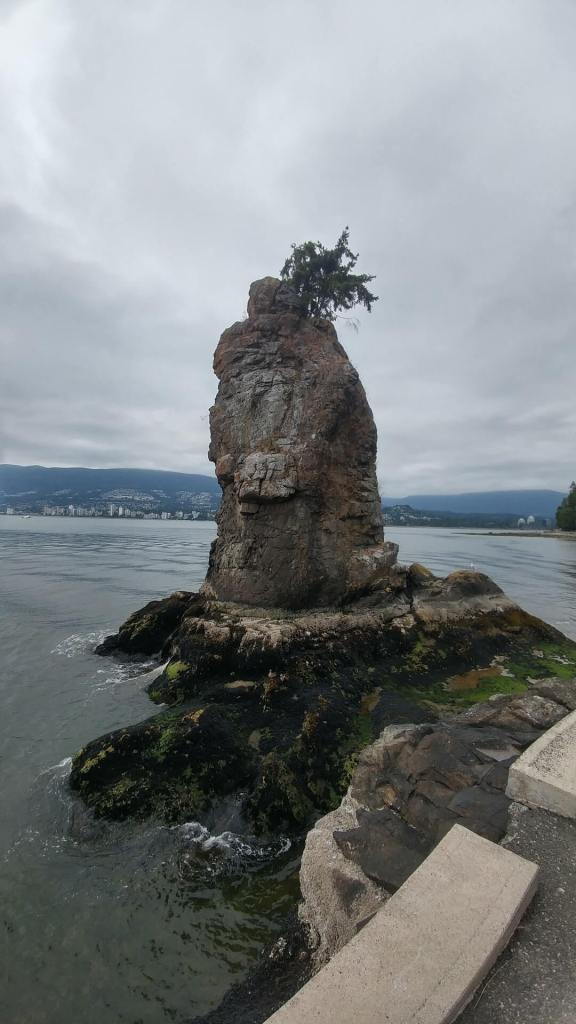 Siwash Rock (Pineapple Rock), formation