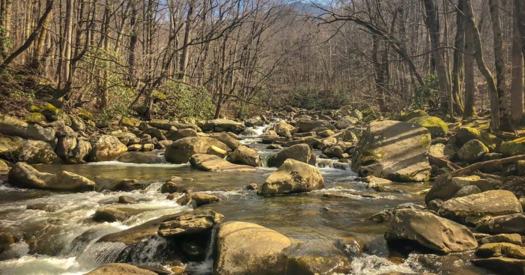 The budget guide to Great Smoky Mountains National Park