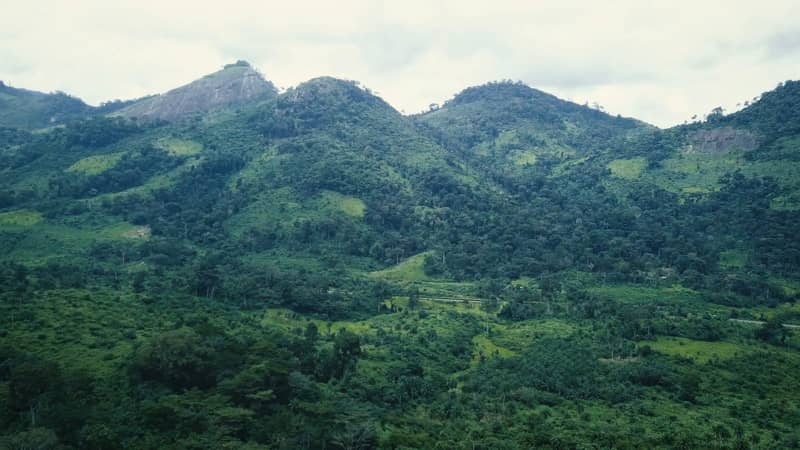 Côte d'Ivoire has rolling hills and mountains covered with lush greenery.