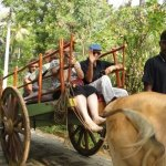 Top 5 Agro Tourism Destinations