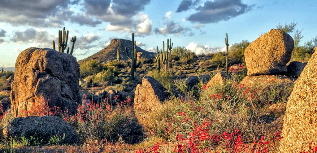 Scottsdale, Arizona: top 5 destinations for November