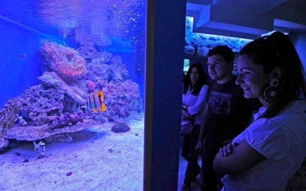 Aquarium Terrarium Šibenik
