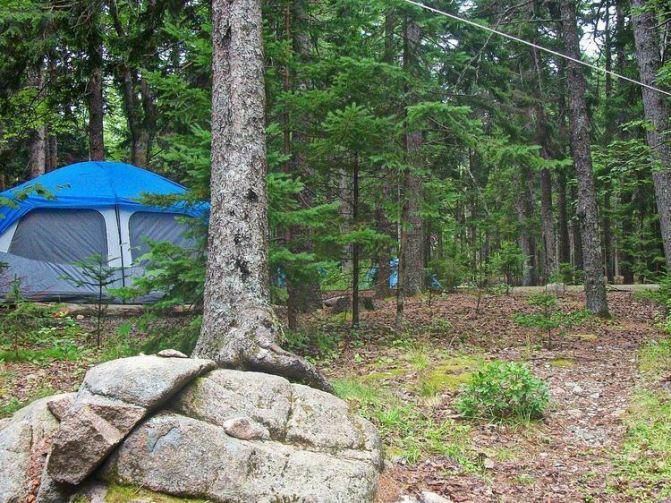 Blackwoods Campground Acadia National Park