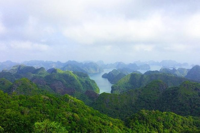 Visit and Hike Cat Ba National Park