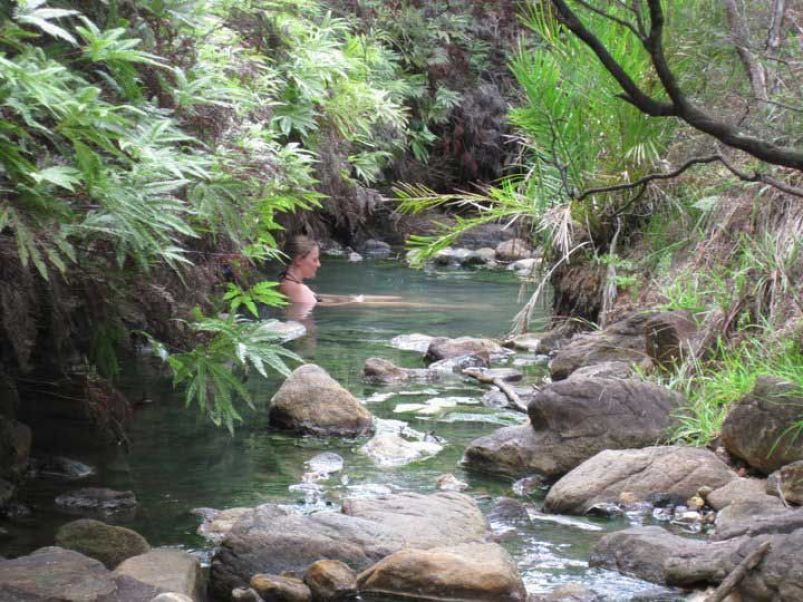 Kaitoke hot springs in New Zealand
