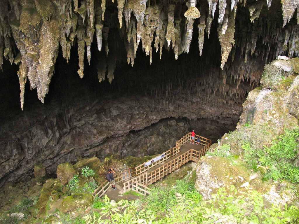Visit Caves in Golden Bay