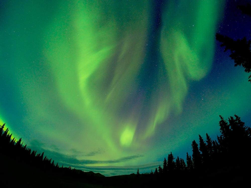 Northern Lights in Denali National Park in Alaska summer bucket list