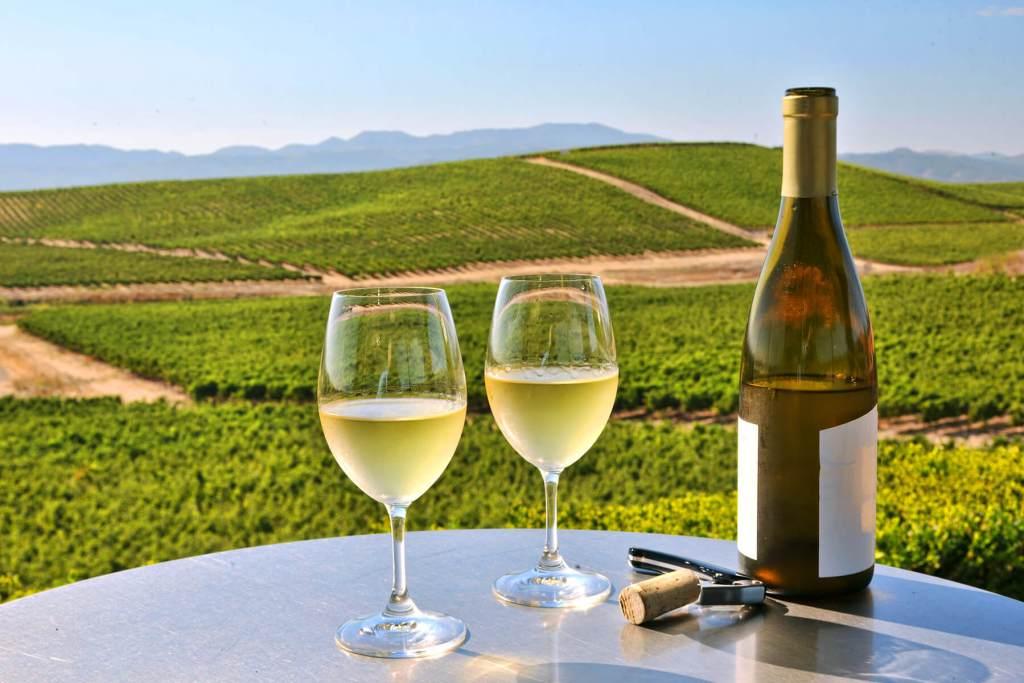 Visit vineyards in Napa summer bucket list