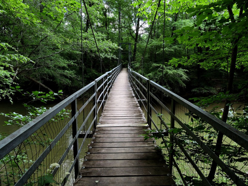 Take a Hike in Audubon Acres Chattanooga, Tennessee