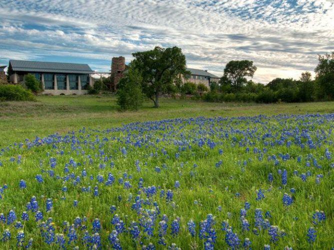 Visit Lady Bird Johnson Wildflower Center Austin